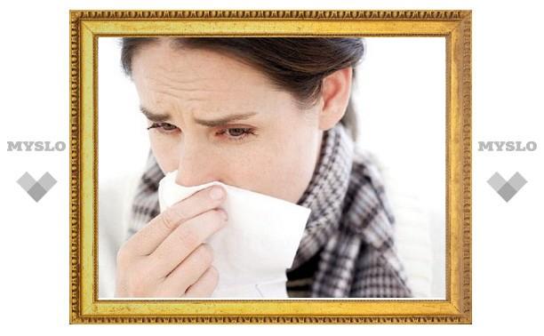 В России началась эпидемия гриппа и ОРВИ