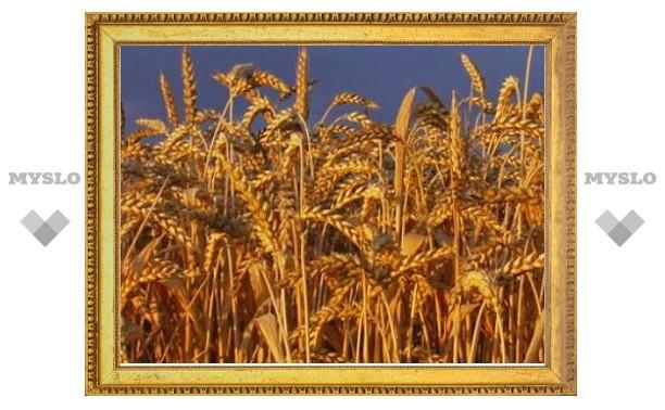 «Ингосстрах» заплатил за погибший урожай более 2 миллионов рублей