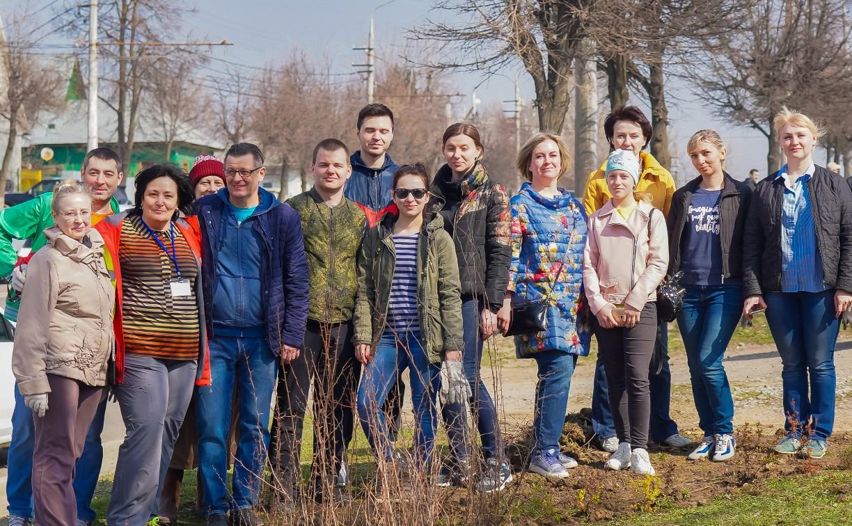 В Зареченском округе Тулы прошел большой субботник