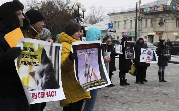 Более 8000 туляков требуют запретить убийство бездомных животных