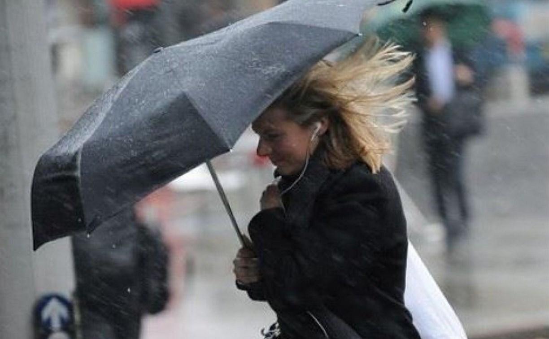Погода в Туле 24 марта: до пяти градусов тепла и северный ветер