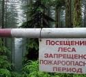 С 15 июля на территории Тульской области вводится особый противопожарный режим