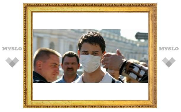В Тулу пришел свиной грипп?