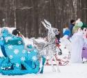 Туляков приглашают поучаствовать в фестивале наряженных санок