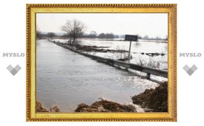 Каким домам в Туле грозит паводок