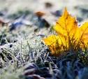 Метеопредупреждение: в Тульской области резко похолодает