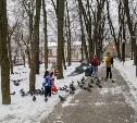 Что происходит с Рогожинским парком в Туле