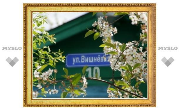 В Туле появится улица Вишневая