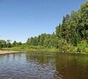 В Тульской области рядом с базой отдыха «Октава» нашли труп