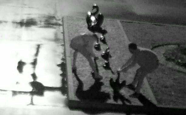 Вандалов, разрушивших скульптуру «Лебединое озеро» в Центральном парке, до сих пор не нашли