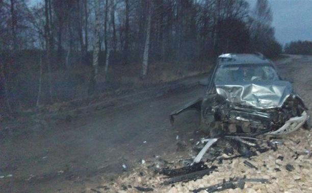 За сутки в Тульской области в ДТП пострадали два ребенка