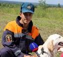 Собаки-спасатели разыскивали людей в завалах и в лесах