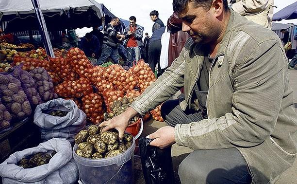 Предприниматели из области попросили вернуть фермерские рынки