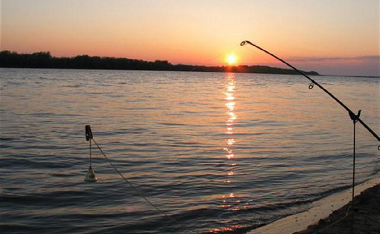 Туляк заплатит штраф за нарушение правил рыбной ловли в Астраханской области
