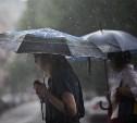 На этой неделе в Тульскую область вернутся дожди