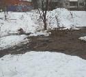 Слив нечистот в тульский пруд: коммунальщики устранили неполадки