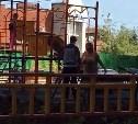 В Туле женщина выгоняет подростков с детской площадки и угрожает облить их кислотой: видео