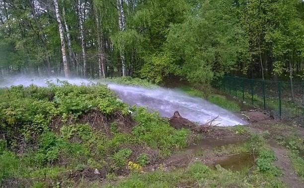 В Центральном парке Тулы произошёл прорыв водопровода