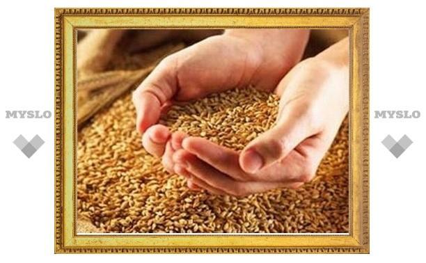 Хватит ли Тульской области собственного урожая, чтобы прокормиться в этом году?