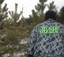 В России лесников  могут приравнять к полицейским и судьям