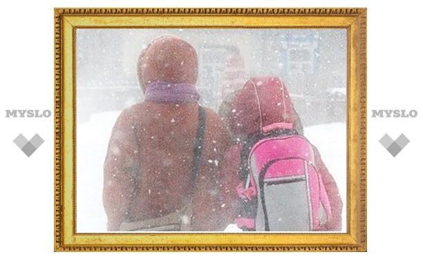 Морозы в Туле - каникулы в школе!