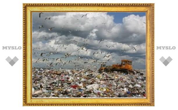 В Тульской области образовалась стихийная свалка отходов