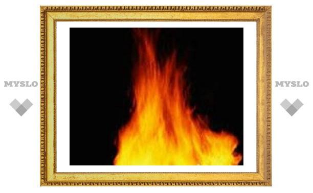 В Туле и области сгорели два человека