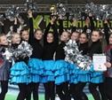 Лучшая команда черлидеров-2013 – «Сильные духом»