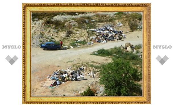 Тульская прокуратура требует убрать мусор