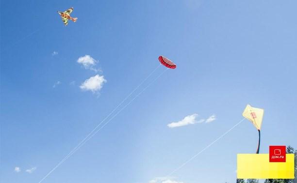 «Дом.ru» приглашает туляков на фестиваль воздушных змеев