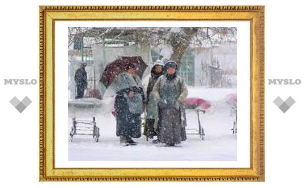 Понедельник в Туле: снегопад