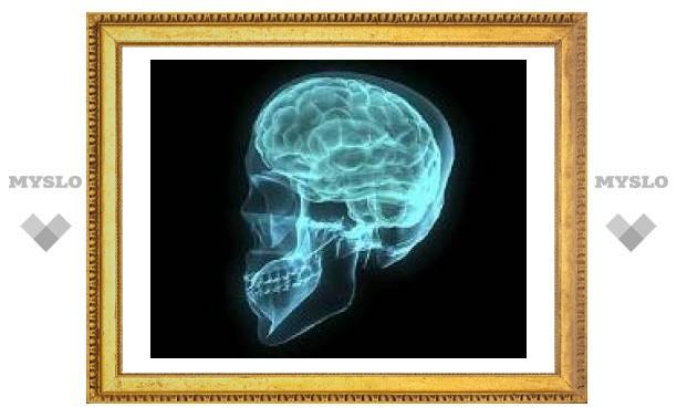 Создан пульт дистанционного управления мозгом