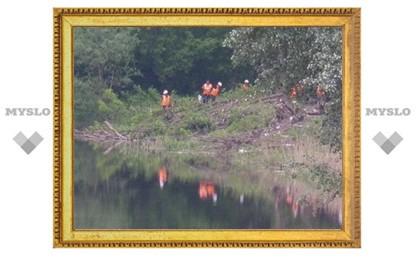 На набережной Дрейера в Туле вырубают деревья