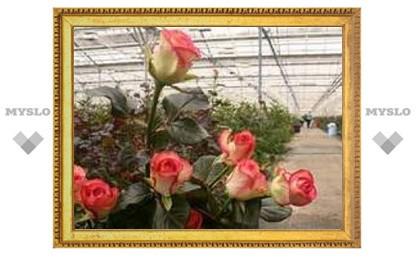 В Киреевске будут выращивать цветы