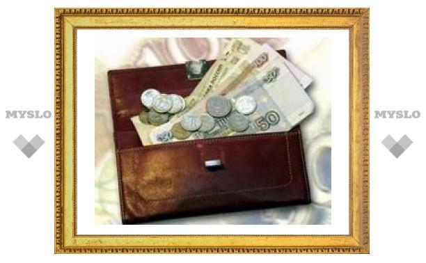 Тула не приняла антикризисный бюджет