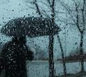Погода в Туле 27 апреля: дожди, ветер и до +10