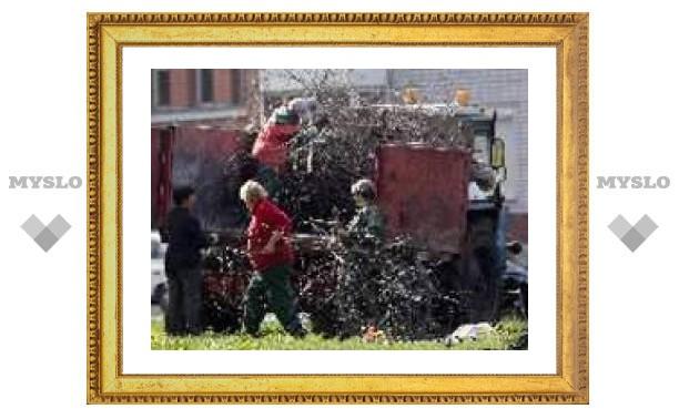 Богородицк оставили без зелени!