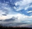 Погода в Туле 29 ноября: облачно, ветрено и холодно