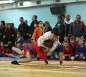 В российских школах на уроках физкультуры хотят преподавать самбо