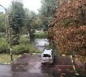На Красноармейском проспекте в Туле из-за порыва канализации затопило двор: видео