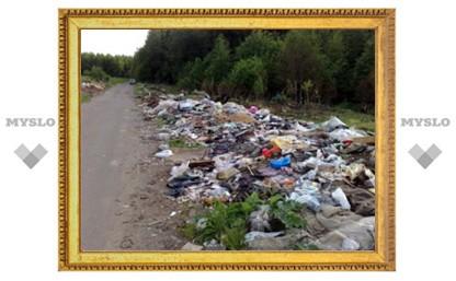 В Тульской области начали борьбу с несанкционированными свалками
