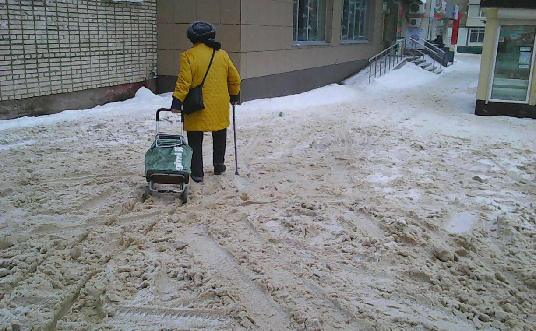 ОНФ подвел итоги мониторинга «Снежный фронт»
