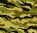 Тест к 23 Февраля: Что ты знаешь об армии?