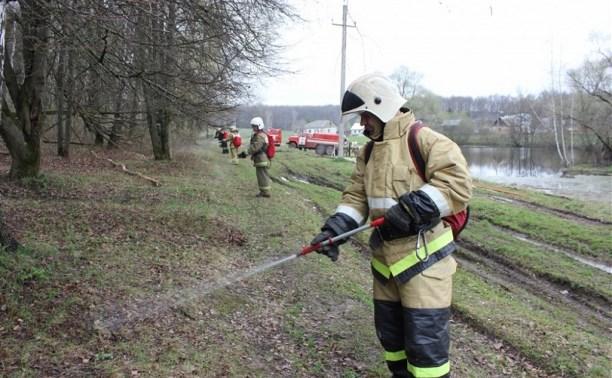 Особый противопожарный режим в Тульской области будет действовать до 10 мая