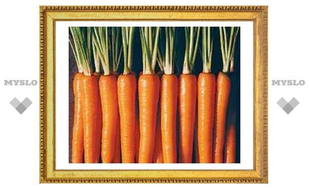 Ученые вывели сверхполезную морковь