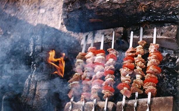 В России предлагают ввести «шашлычный сбор»