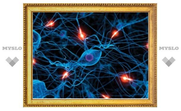 Американцы предложили новый подход к лечению эпилепсии