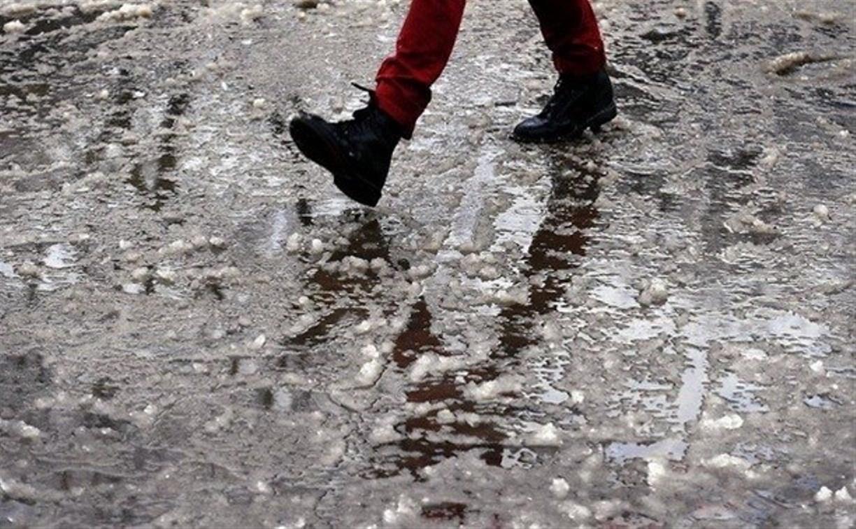 Погода в Туле на выходных: до трёх градусов тепла и снег с дождём