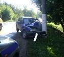 В Донском девушка за рулем «ИЖ-Ода» врезалась в столб