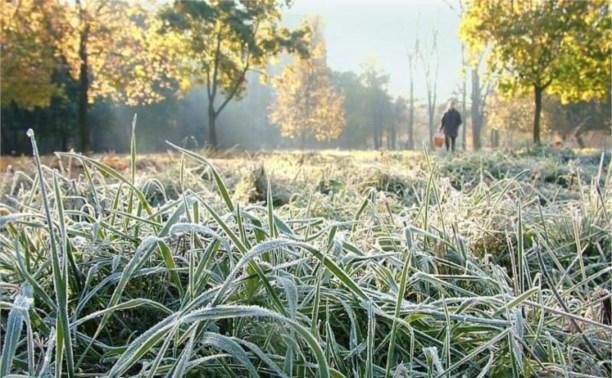 Ночью 17 и 18 сентября в Туле ожидаются заморозки